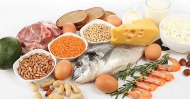 List of Foods That Contain the Most Amino Acids